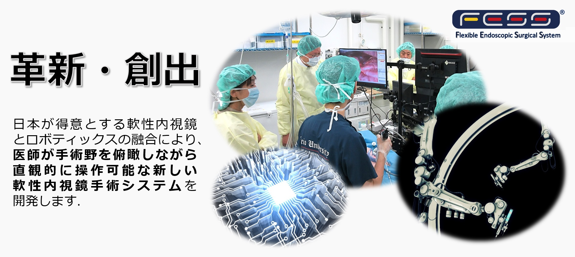 「Flexible Endoscopic Surgical System;FESS」トップ